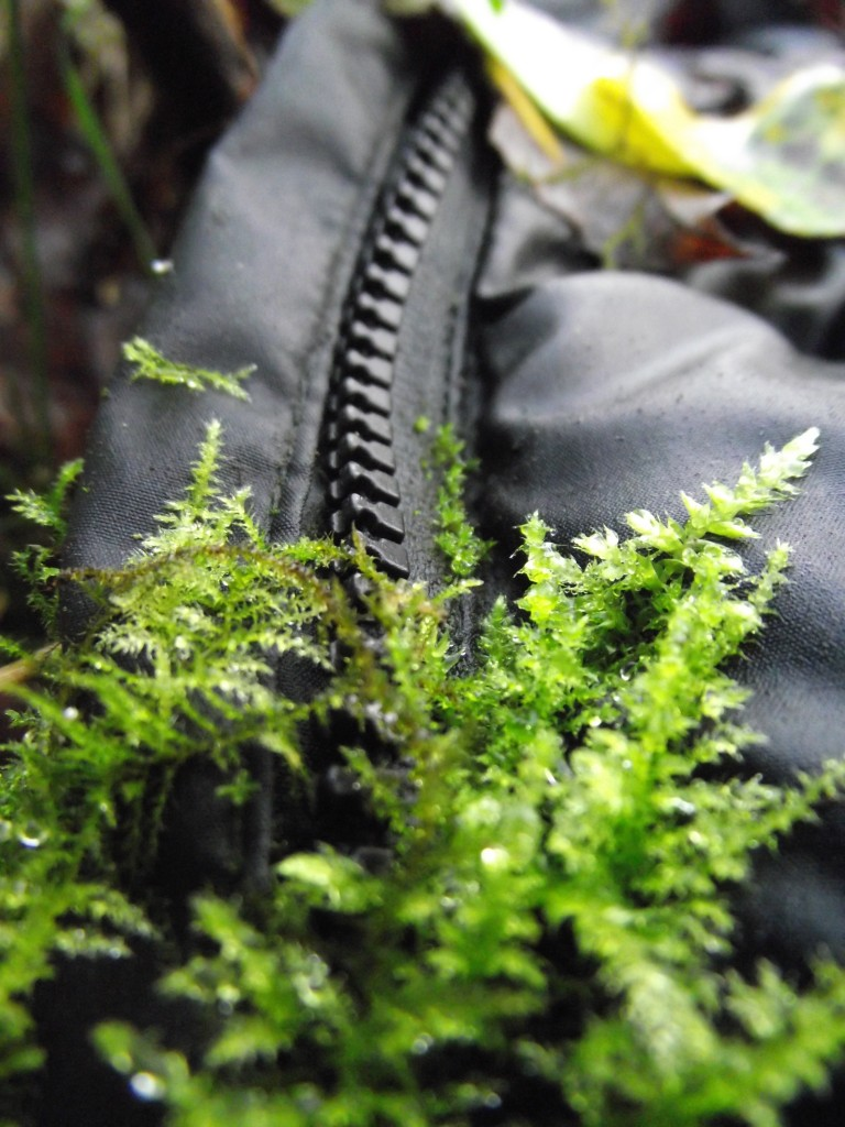 Coat with moss growing on