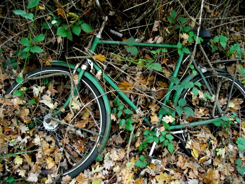 Overgrown bike