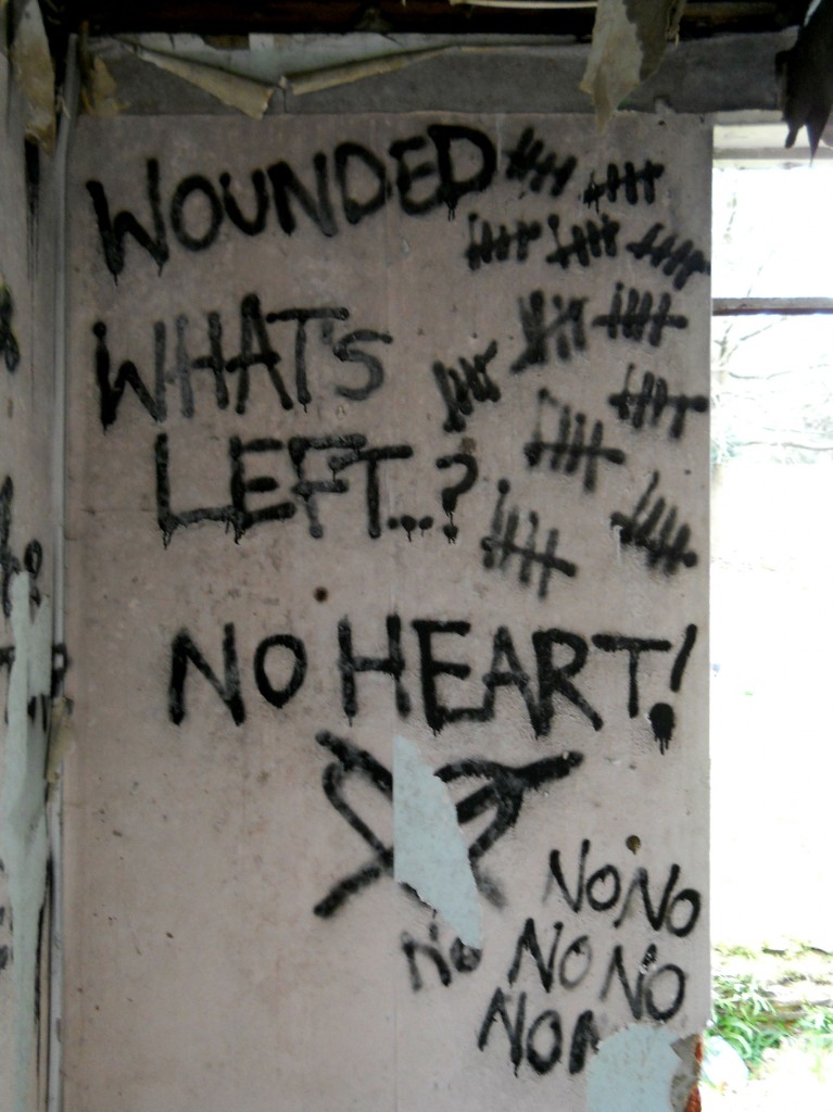 Wounded-whats-left-no-heart